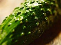 Komkommermacro Stock Afbeelding