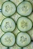 Komkommerplakken Royalty-vrije Stock Fotografie