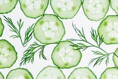 Komkommerplakken Groene dille Patroon De achtergrond van het voedsel Royalty-vrije Stock Foto's