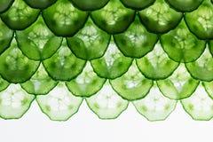 Komkommerplakken Patroon Kader met de exemplaarruimte De achtergrond van het voedsel Macro Stock Foto