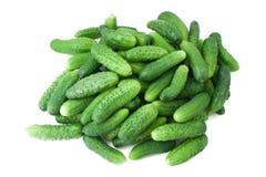 Komkommers. Royalty-vrije Stock Foto's