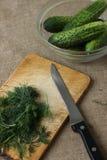 Komkommers en dille Royalty-vrije Stock Afbeeldingen