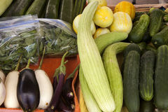 Komkommers en Groenten Royalty-vrije Stock Foto