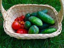 Komkommers en tomaten royalty-vrije stock fotografie