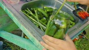 Komkommers in kruik stock videobeelden