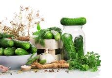 Komkommers met kruiden op behoud op een witte backg worden voorbereid die royalty-vrije stock afbeelding