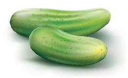 Komkommers op een witte achtergrond Royalty-vrije Stock Foto