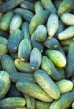 Komkommers op markt Royalty-vrije Stock Foto