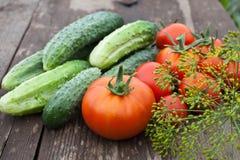 Komkommers, tomaten en venkelzaad Royalty-vrije Stock Foto