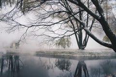 Komma för dimma royaltyfria bilder