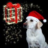 komma för jul Royaltyfri Bild