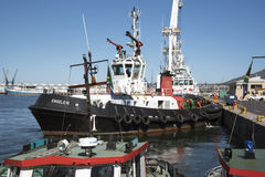 Kommande Cape Town för bogserbåt hamn Arkivfoton