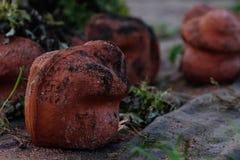 Kommende Welt erinnern sich an mich - der Abbau laufend - WW1 - Zillebeke stockfotografie