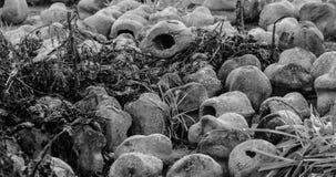 Kommende Welt erinnern sich an mich - der Abbau laufend - WW1 - Zillebeke lizenzfreies stockfoto