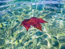 Kommender Herbst auf der Küste stockbild