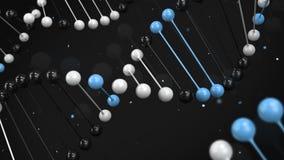 Kommentera modellen av svart, vit och slösa DNAtråden på svart bakgrund arkivfilmer
