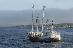 Kommersiell fiskebåtskördearbetareöverskrift in mot dimma Arkivfoton