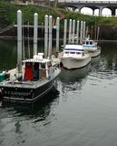 Kommersiella charterfiskebåtar för lax och för torsk arkivbild
