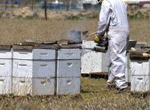Kommersiellt biföretag: beekeepers på arbete Royaltyfria Bilder