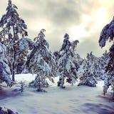 kommet har vinter arkivfoto