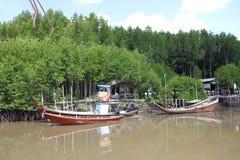 Kommet till floden av liv Royaltyfri Foto