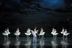 Kommet till räddningsaktionOjta-balett svan sjön Fotografering för Bildbyråer
