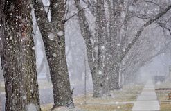 Kommt hier der Schnee Lizenzfreies Stockbild