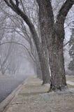 Kommt hier der Schnee stockfotografie