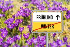 Kommt hling del ¼ de Der Frà Krokusse en hlingssonne del ¼ de Frà del der Imagen de archivo libre de regalías