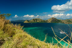 Komodo Coral Bay lizenzfreies stockfoto