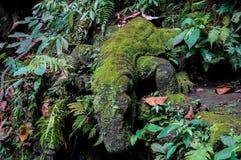 Komodo Dragon Statue fotografia de stock