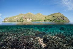 Siaba Kecil. Komodo is incredible, on both sides of the waterline Royalty Free Stock Image