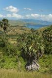 Komodo Island Royalty Free Stock Images