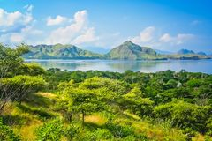 Komodo island landscape. Green lush jungle mountain coastal landscape of the Komodo island, Indonesia, Asia royalty free stock photo
