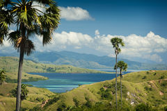 Komodo Island Trekking Royalty Free Stock Photos