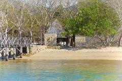 Komodo wyspa Obrazy Stock