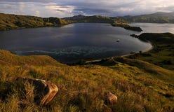 Komodo wyspy park narodowy Zdjęcie Royalty Free