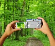 Kompakte Digitalkamera Stockbild
