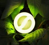 Kompakte Leuchtstoffglühlampe Lizenzfreies Stockbild