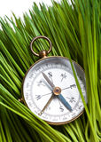 Kompas en Groen Gras Royalty-vrije Stock Fotografie