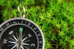 Kompas in het mos stock afbeeldingen