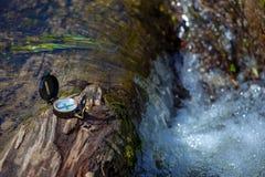 Kompas kłama na drzewie na brzeg rzeki Fotografia Royalty Free