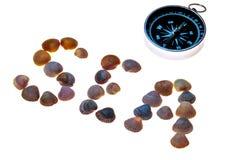 Kompas morze kłaść z seashells na białym tle i słowo Odizolowywający na bielu Pojęcie czas wolny, wakacje, podróż zdjęcia royalty free