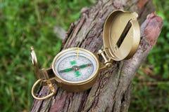 Kompas na drzewny plenerowym Zdjęcia Stock