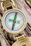 Kompas na drzewny plenerowym Zdjęcie Royalty Free