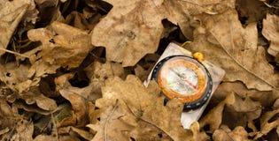 Kompas pod suchymi dębowymi liśćmi Zdjęcia Royalty Free