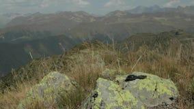 Kompass auf Stein stock footage