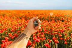 Kompass i en hand i blommaäng royaltyfri fotografi