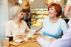 Kompisar i kafé Fotografering för Bildbyråer
