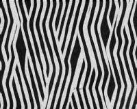 komplicerad sebra för pälsmodellkortslutning Arkivfoto